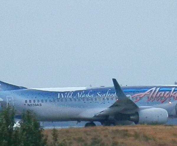 The Salmon-Thirty-Salmon Alaska Airlines Livery